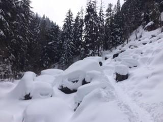 Tawanamas snow