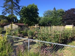 EPC garden